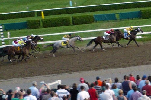 Rachel Alexandra in the Woodward stretch