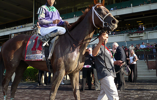 Bribon enters the winner's circle after the Met Mile